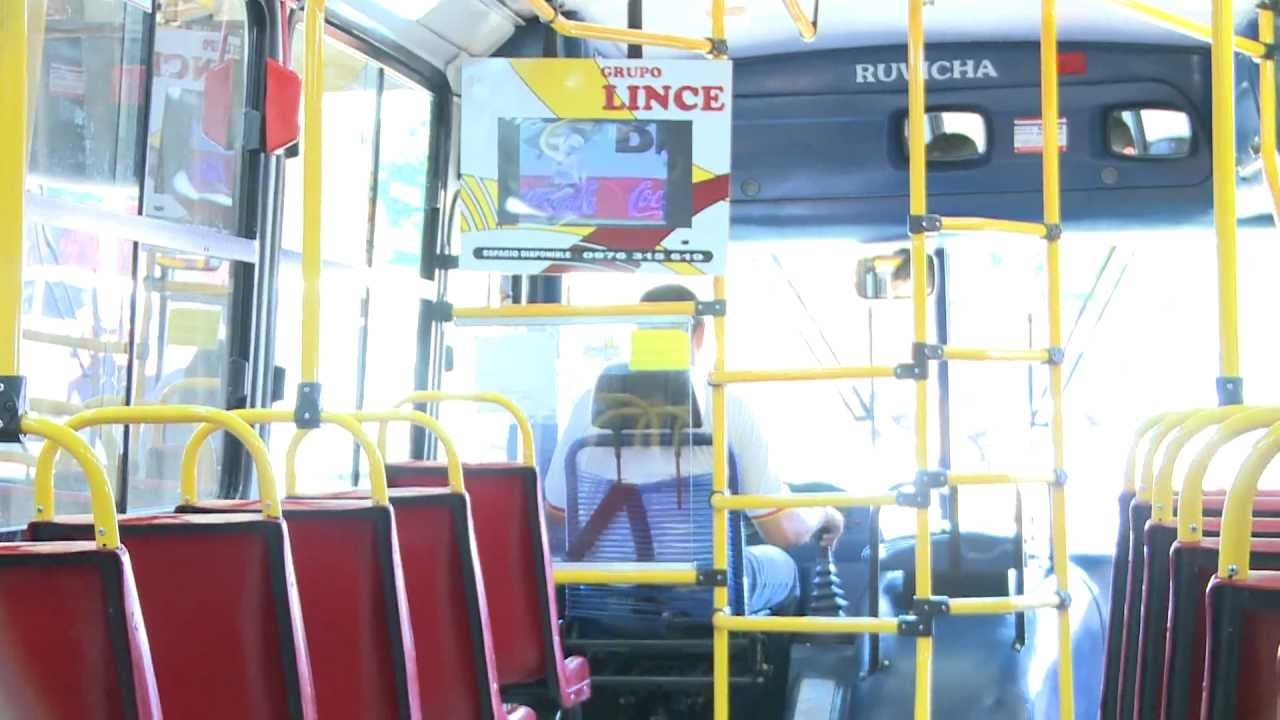 Conocer Online Para Discapacitados Chica Busca Chico León-4032