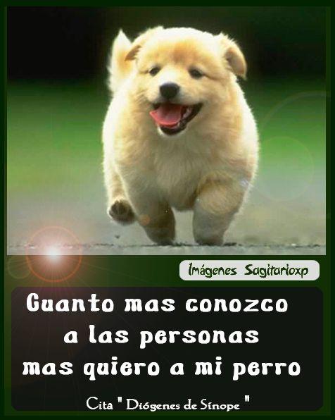 Quiero Citas Gente Soltera Mulher Por Whatsapp Vila Nova-22321