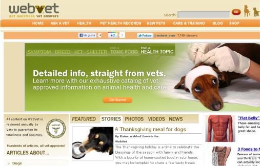 Sitio De Conocer Para Perros Escort La Gomera-31677