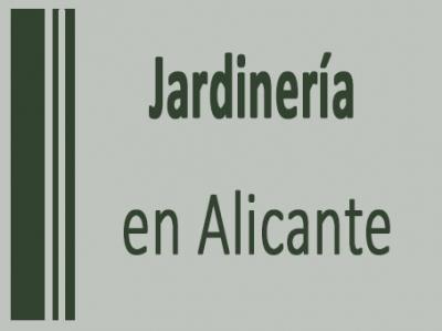 Agencias Matrimoniales Elche Menina Quer Foder Cuiabá-76228