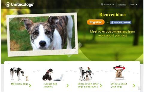Sitio De Conocer Para Perros Escort La Gomera-63216